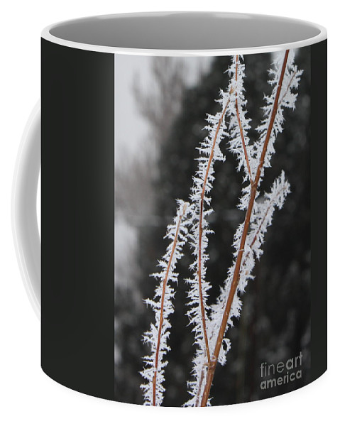 Frost Coffee Mug featuring the photograph Frosty Branches by Carol Groenen
