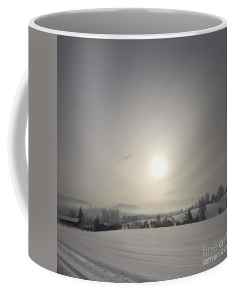 Winter Coffee Mug featuring the photograph Frosty Midday by Angel Ciesniarska