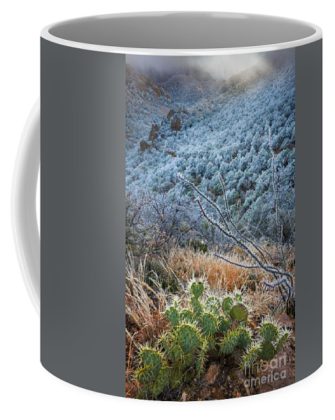 America Coffee Mug featuring the photograph Frosty Prickly Pear by Inge Johnsson
