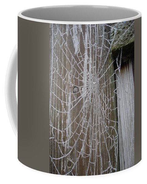Winter Coffee Mug featuring the photograph Frosty Web by Susan Baker