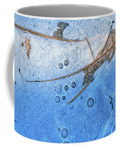 Ice Coffee Mug featuring the photograph Frozen in Time by Bill Morgenstern