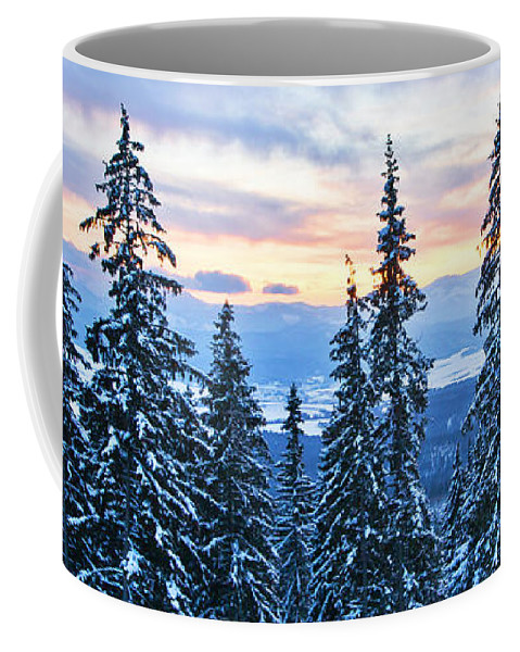 Hotel Panorama Resort Coffee Mug featuring the photograph Frozen Reflection 2 by Alex Art and Photo