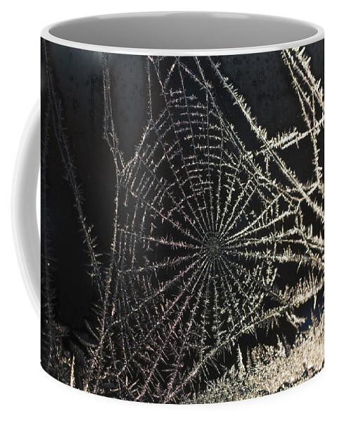 Spider Coffee Mug featuring the photograph Frozen Web by Casper Cammeraat