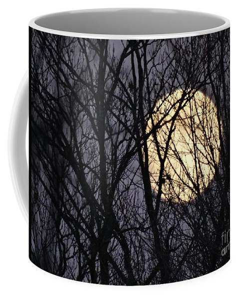 Moon Coffee Mug featuring the photograph Full Yellow Moon by Gina Sullivan
