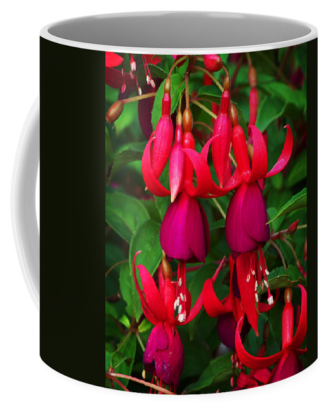 Flowers Coffee Mug featuring the photograph Fuschia Heron by Anthony Jones