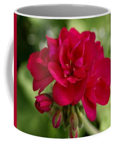 Flower Coffee Mug featuring the photograph Fuschia by Jean Haynes