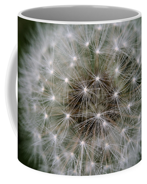 Dandelion Coffee Mug featuring the photograph Fuzzy by Angela Rath