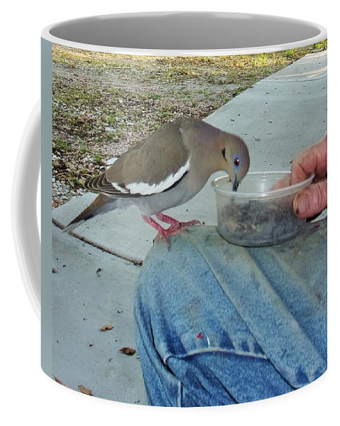 White Wing Dove Coffee Mug featuring the photograph Fuzzy White Wing C by Michael Dillon