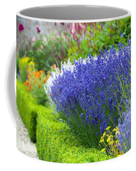 Blue Coffee Mug featuring the photograph Garden Flowers by Svetlana Sewell