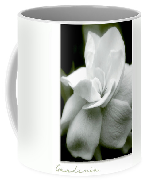 Flower Coffee Mug featuring the photograph Gardenia by Holly Kempe