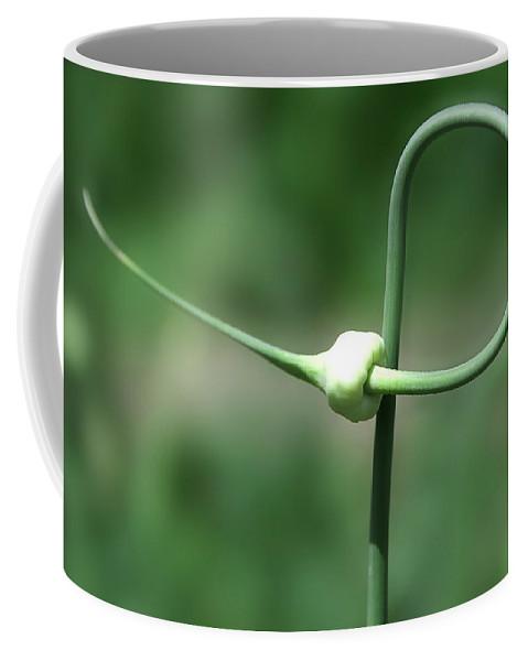 3d; Abstract; Artistic; Botanic; Botanical; Bud; Bug; Digital; Galic; Garden; Grass; Green; Grow; Growing; Leaf; Leaves; Light; Natural; Nature; Swirl; Swirls; Yellow Coffee Mug featuring the photograph Garlic Abstract1 by Svetlana Sewell