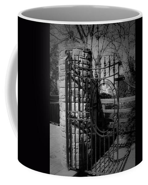 Irish Coffee Mug featuring the photograph Gate In Macroom Ireland by Teresa Mucha