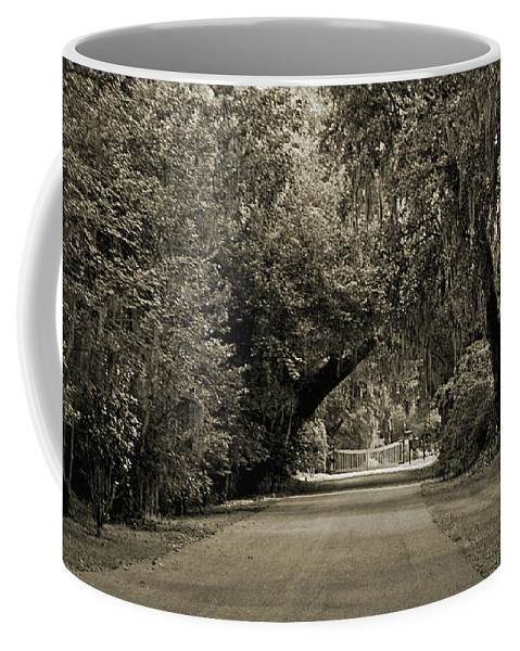 Plantation Coffee Mug featuring the digital art Gate To Magnolia Plantation by DigiArt Diaries by Vicky B Fuller