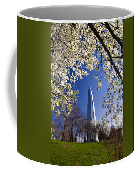 Gateway Arch Coffee Mug featuring the photograph Gateway Arch With Cherry Tree In Bloom. by Sven Brogren