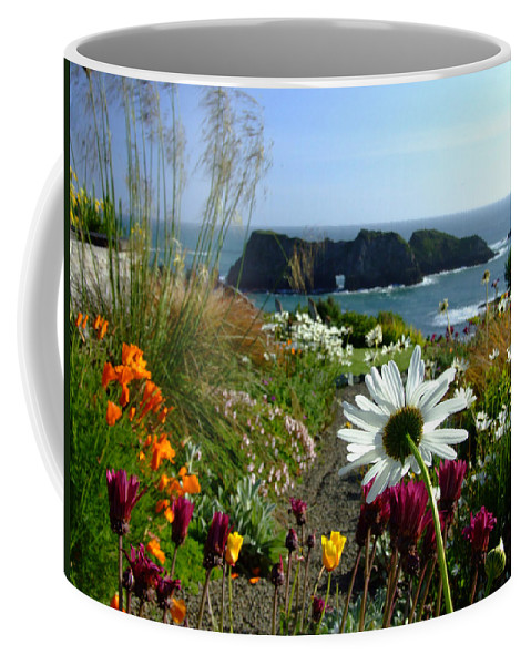 Daisy Coffee Mug featuring the photograph Gazing Toward The Sea by Donna Blackhall