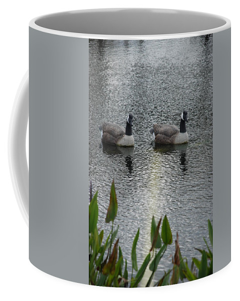 Water Coffee Mug featuring the photograph Geese by Rob Hans
