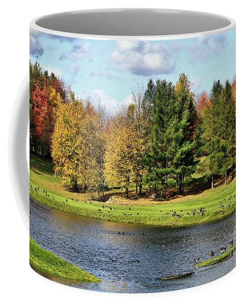Fall Coffee Mug featuring the photograph Geese Sanctuary by Deborah Benoit