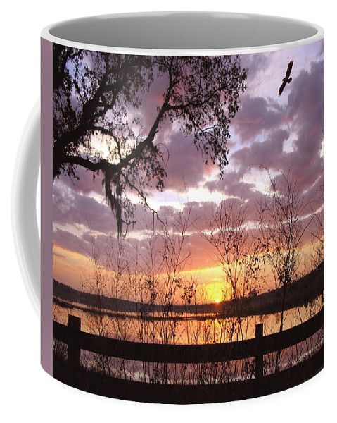 Sunrise Coffee Mug featuring the photograph Gentle Morning In The Grove by Adele Moscaritolo