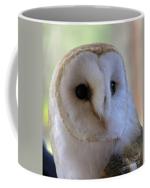 Barn Coffee Mug featuring the photograph George by Louise Magno