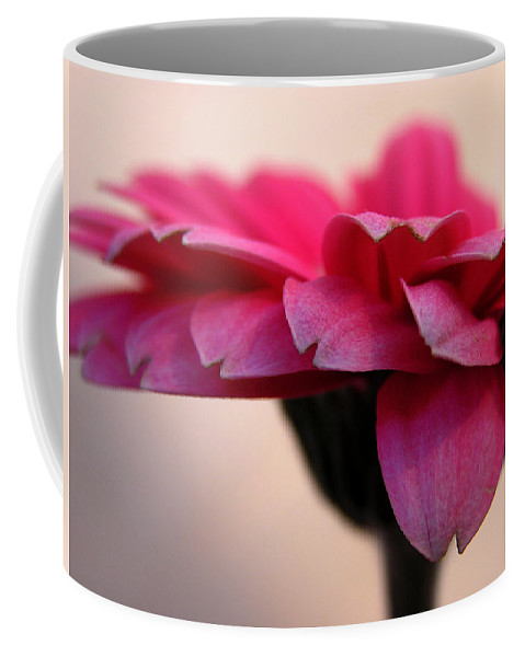 Pink Flower Coffee Mug featuring the photograph Gerbera Daisy by Carol Milisen