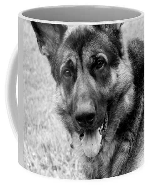 Dog Coffee Mug featuring the photograph German Shepherd by Jai Johnson