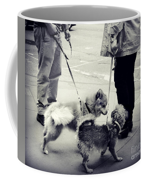 Dog Coffee Mug featuring the photograph Getting To Know You - Puppies On Parade by Miriam Danar
