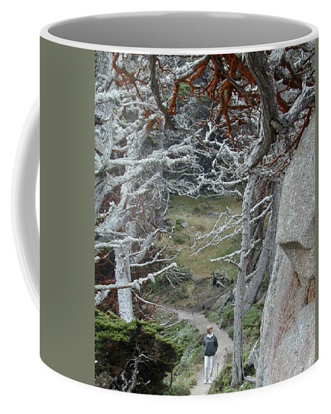 Lichens Coffee Mug featuring the photograph Ghost Trees by Douglas Barnett