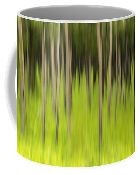 Coniferous Forest Coffee Mug featuring the photograph Ghostly Forest by John Vose