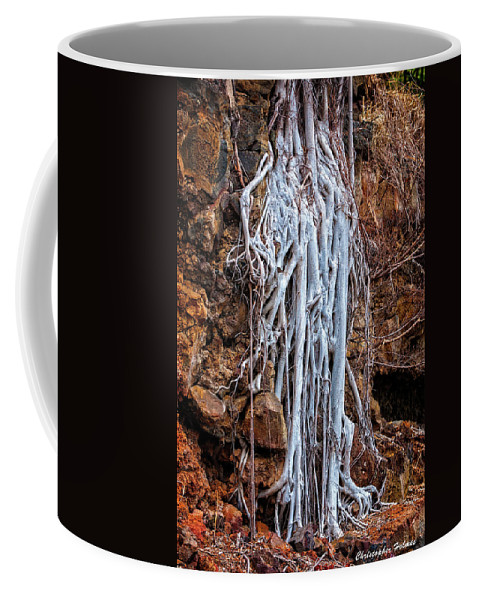 Roots Coffee Mug featuring the photograph Ghostly Roots by Christopher Holmes
