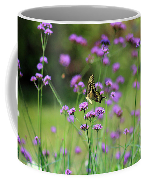 Animal Coffee Mug featuring the photograph Giant Swallowtail Butterfly In Purple Field by Karen Adams