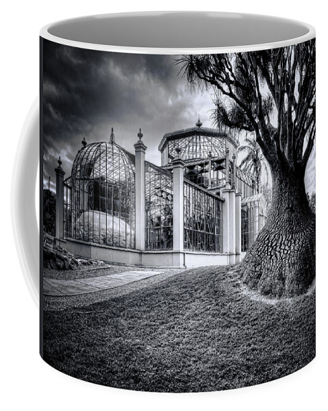 Architecture Coffee Mug featuring the photograph Glasshouse And Tree by Wayne Sherriff