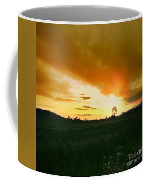 Tree Coffee Mug featuring the photograph Glowing Tree by Angel Ciesniarska