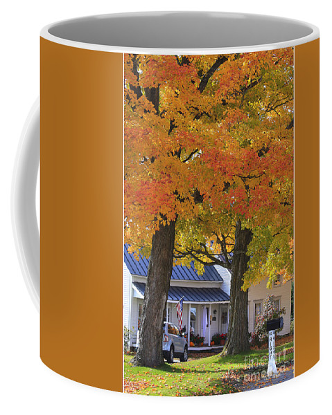 Fall Coffee Mug featuring the photograph Go Right Please by Deborah Benoit