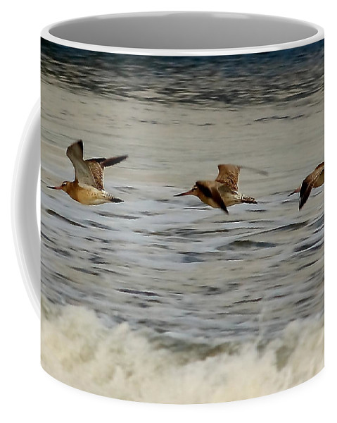Bird Coffee Mug featuring the photograph Bar Tailed Godwits by Jeff Townsend