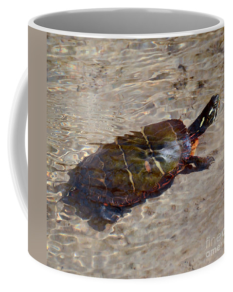 Turtle Coffee Mug featuring the photograph Going For A Dip by Kerri Farley
