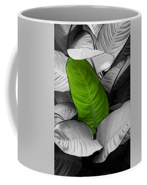 Leaf Coffee Mug featuring the photograph Going Green - Dreamy by Marilyn Hunt