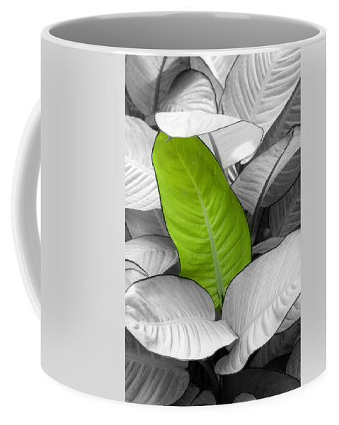 Leaf Coffee Mug featuring the photograph Going Green Lighter by Marilyn Hunt