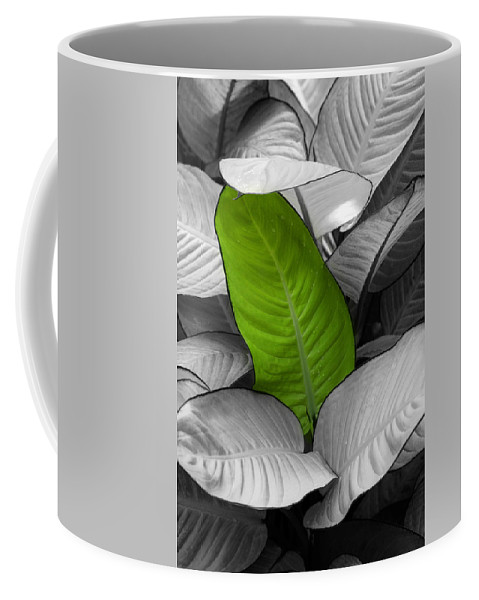 Green Coffee Mug featuring the photograph Going Green by Marilyn Hunt