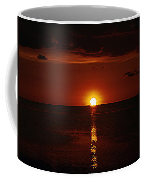 Sunset Coffee Mug featuring the photograph Going In by Bob Johnson