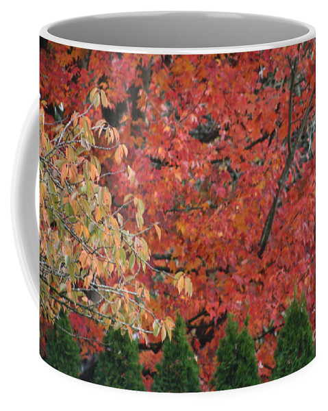 Jagged Coffee Mug featuring the photograph Going Jagged Green by Brian Boyle