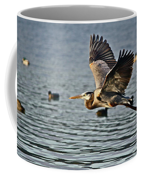 Birds Coffee Mug featuring the photograph Going Up by Diana Hatcher