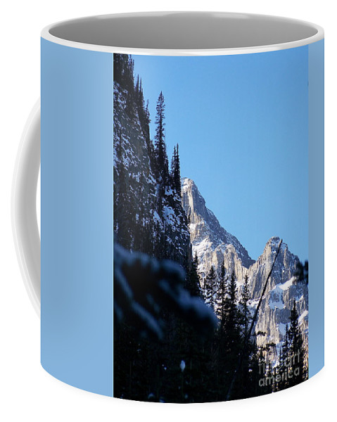 Narrow Coffee Mug featuring the photograph Going Up by Greg Hammond