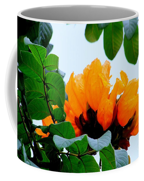 Africa Coffee Mug featuring the photograph Gold African Tulips by Mary Deal