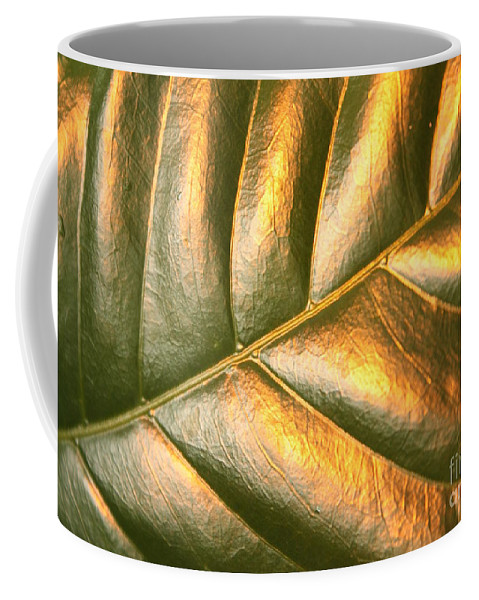 Gold Leaf Coffee Mug featuring the photograph Gold Leaf Canvas by Carol Groenen