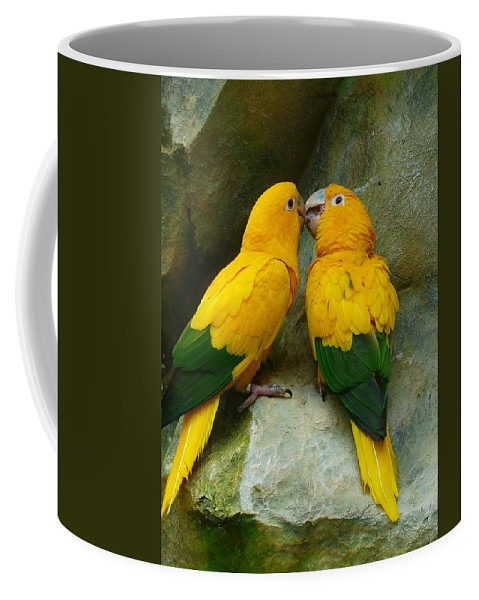 Parrot Coffee Mug featuring the photograph Gold Parakeets by FL collection