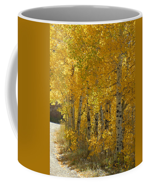Aspen Coffee Mug featuring the photograph Golden Aspen by Heather Coen