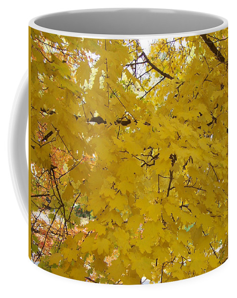 Fall Autum Trees Maple Yellow Coffee Mug featuring the photograph Golden Canopy by Karin Dawn Kelshall- Best