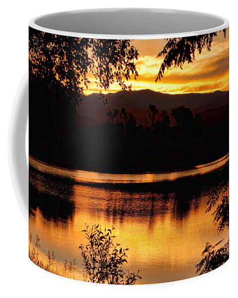Gold Coffee Mug featuring the photograph Golden Day At The Lake by James BO Insogna