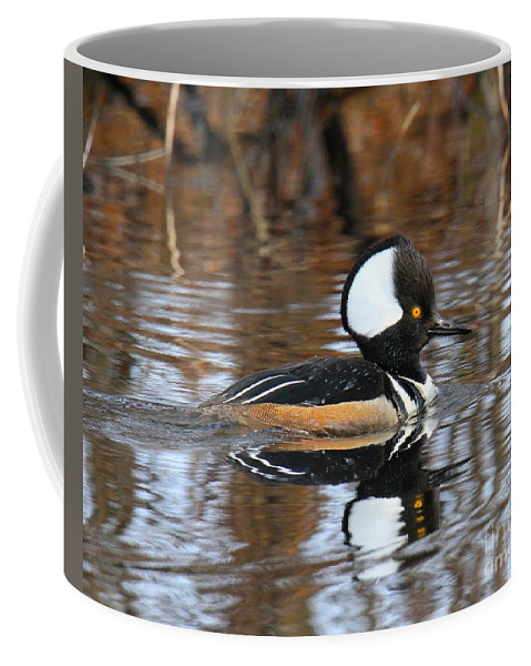 Duck Coffee Mug featuring the photograph Golden Eye by Roger Becker