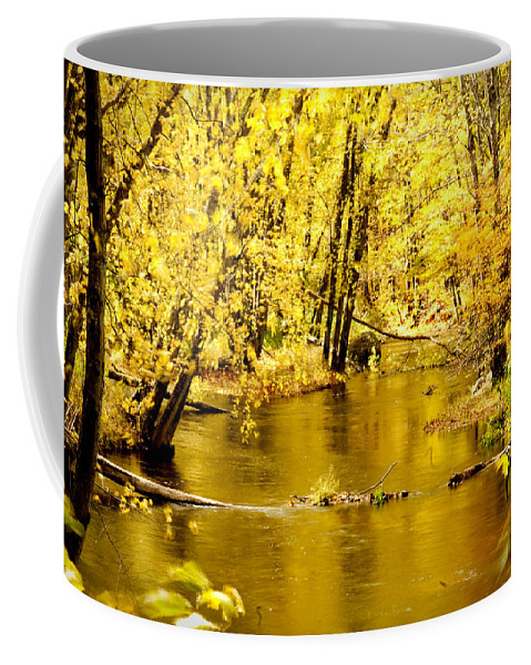 Foliage Coffee Mug featuring the photograph Golden Fall by Greg Fortier